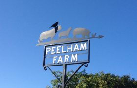 Peelham Farm Produce